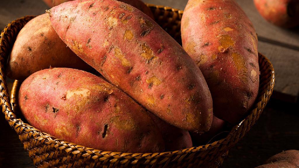 慢性胃炎可以吃番薯吗?但不宜多吃
