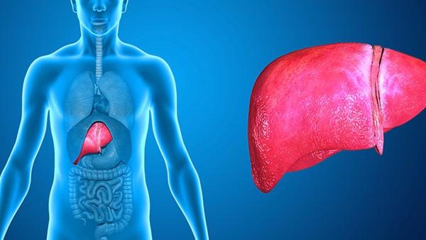 肝炎的传播途径有什么?肝炎的4个传播途径