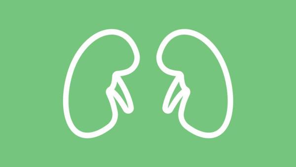 肾结石检查做什么?