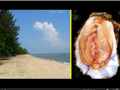 女人阴部被干图片_美女海滩裸晒,下体被螃蟹当\