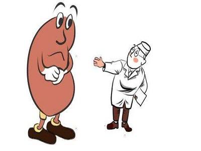 而且处于可逆期的肾单位经过及时的治疗是可以逆转并发挥强大的代偿