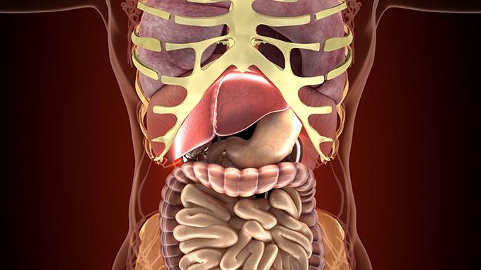 切除膽囊的影響