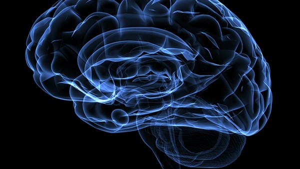彩超对脑部进行梗塞检查