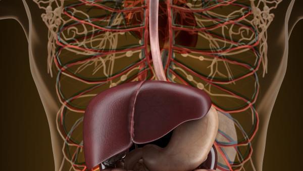 肝臟血管瘤可以手術嗎