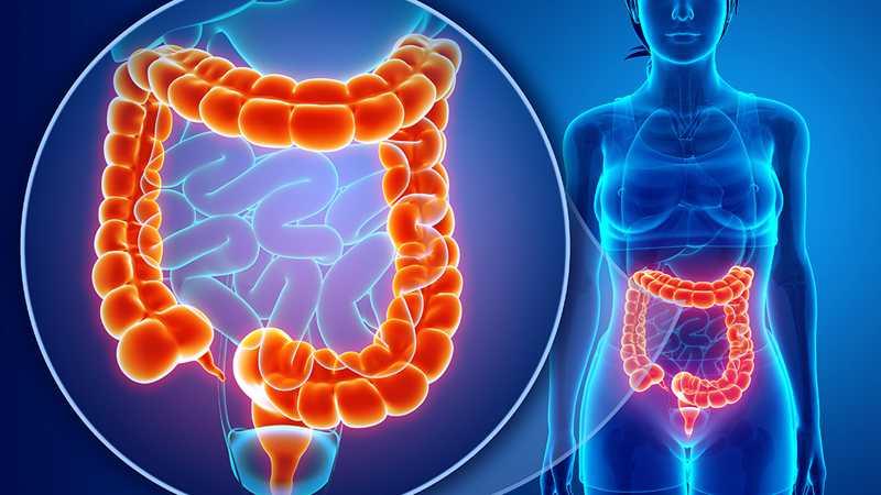 腸炎是怎樣引起的?