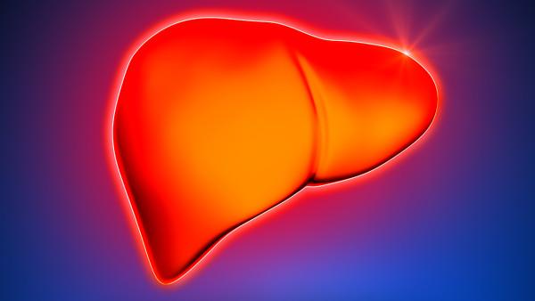 脂肪肝可以預防嗎