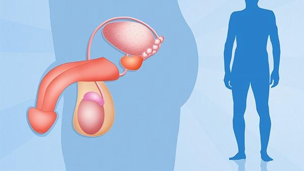 前列腺囊肿能自愈吗? 不可能自愈的