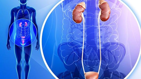 尿毒症可以治好吗 通过这4种方法治疗尿毒症