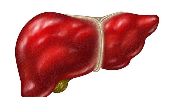 重症肝炎的治疗方法有哪些 重症肝炎的5种治疗方法