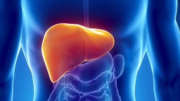 肝炎为什么会纤维化?什么是肝纤维化