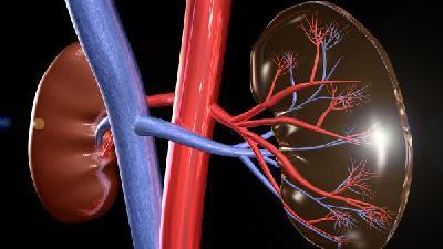 糖尿病肾病要注重营养素  具体是哪些呢?