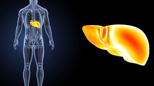 如何检查乙肝发展到什么地步了 该挂哪些科进行检查