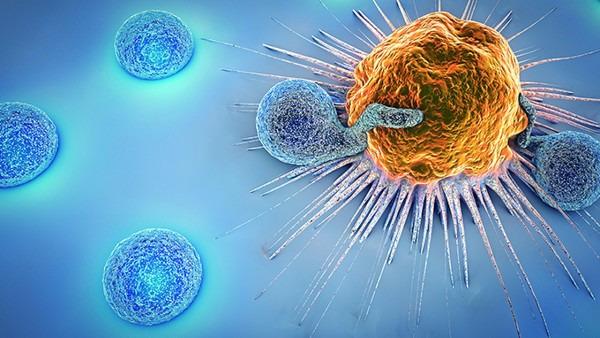 新冠病毒及新冠疫苗含有艾滋病毒序列会侵入大脑?官方辟谣