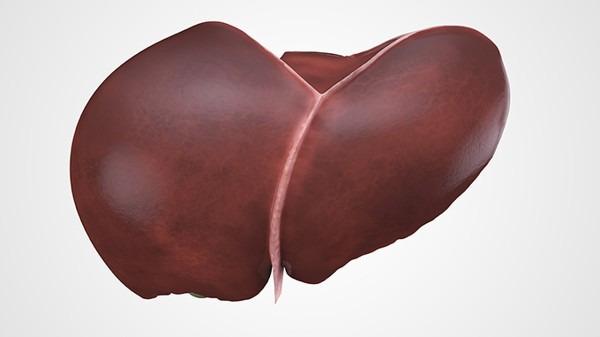 乙肝抗体阳性怎么办 乙肝抗体阳性患者饮食要注意什么
