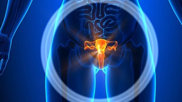 流产后子宫内膜一般多厚 子宫内膜为什么会变薄