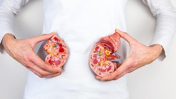 怎样养肾最靠谱 正确养肾的运动及食疗方法