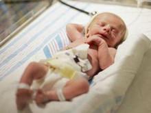 早產兒貧血