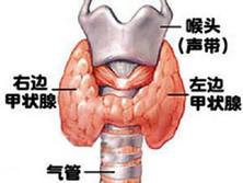 甲狀腺功能減退