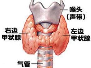 甲状腺功能异常伴发的精神障碍
