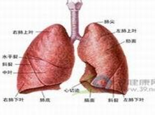 小兒肺栓塞