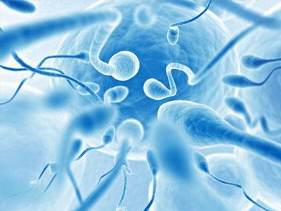 男人趴着睡是否会真的损害到精子?