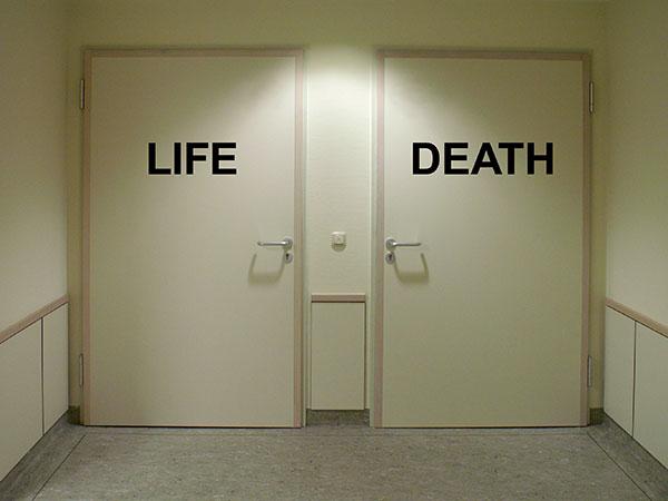 寿命(2).jpg