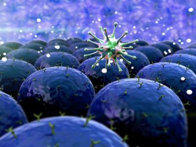 T细胞免疫疗法首次成功应用于晚期乳癌