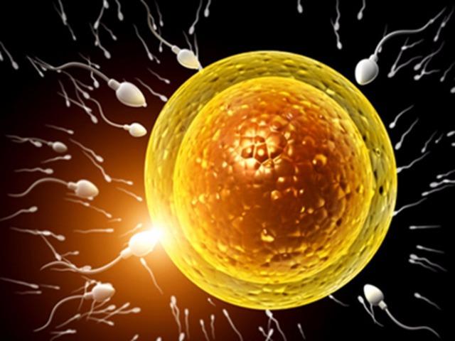 精子好吃 男人的精子女人可以吃吗
