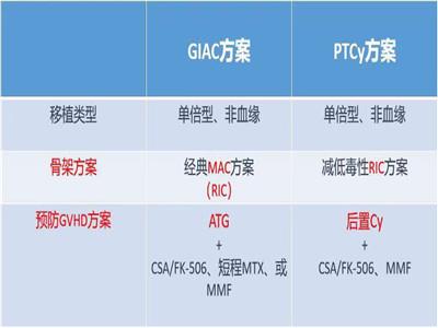 北京博仁医院 杨帆:移植前预处理,清髓、减低毒性 or 非清髓?